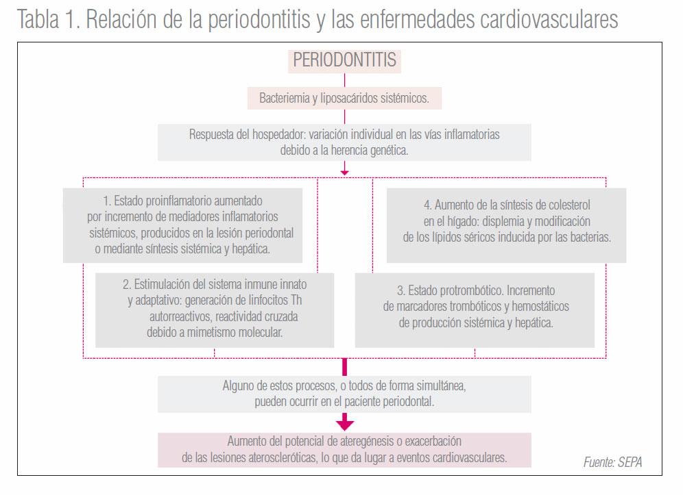 Reportaje sobre cardiología y periodoncia en la revista 'Maxillaris'